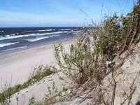 Лучшие пляжи Крыма  moikrimru