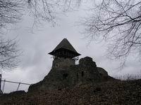 Невицкий замок. Фото дня