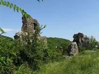 Виноградовский замок
