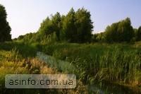 озеро Свитязь. Фото дня