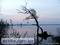 Озеро Люцимер. Фото дня