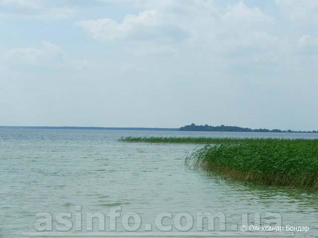 Озеро Свитязь