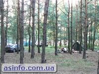 Незабудка палаточный городок Свитязь