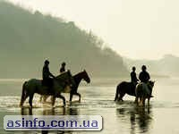 Конные прогулки по Шацким озерам